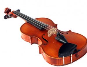 viola-iS-2