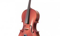 violonchelo_6563
